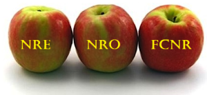 understanding nri accounts repatriablity tds - Understanding NRI Accounts Repatriablity & TDS